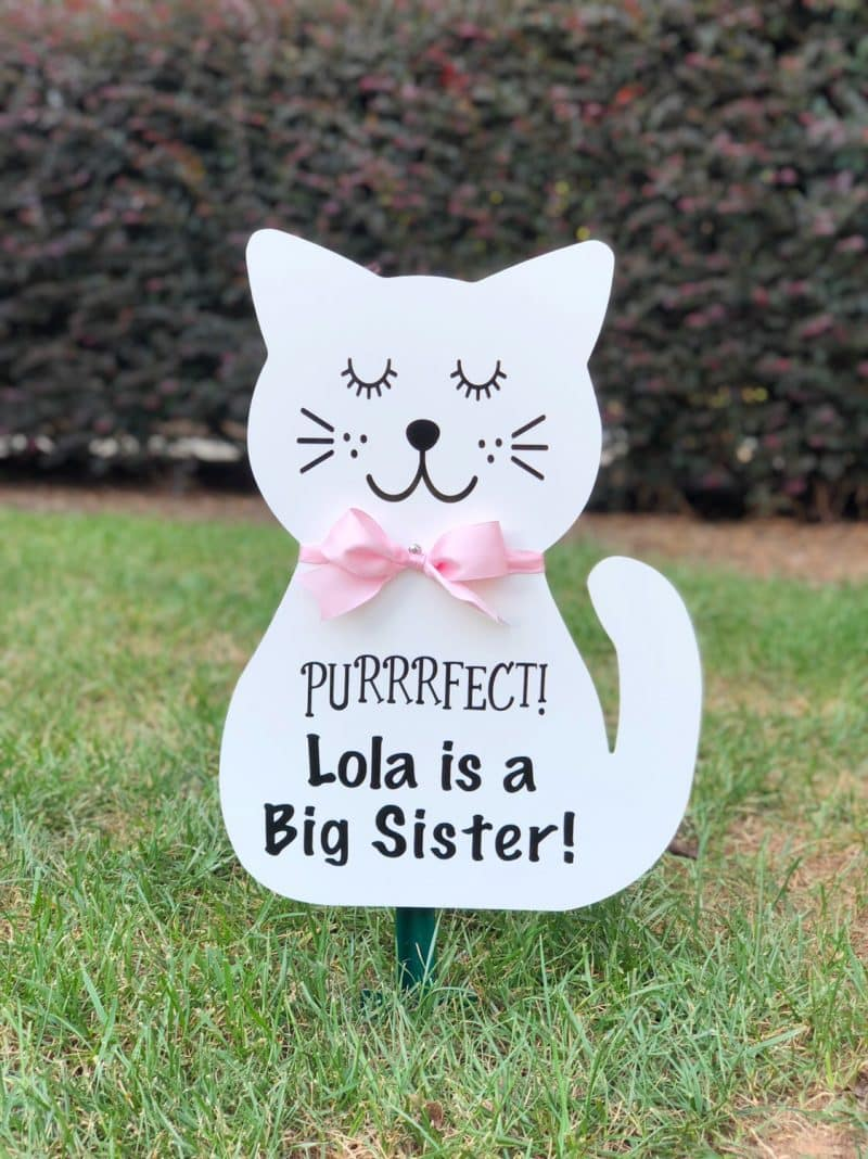 Cat Birth Announcement Yard Sign